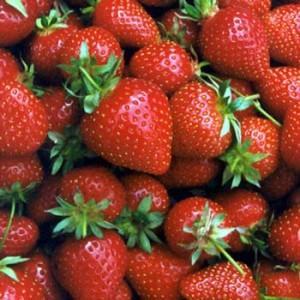 strawberries1-300x300
